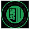 logo_dgsv1920_1