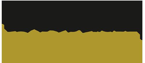 logo_dresden-marketing