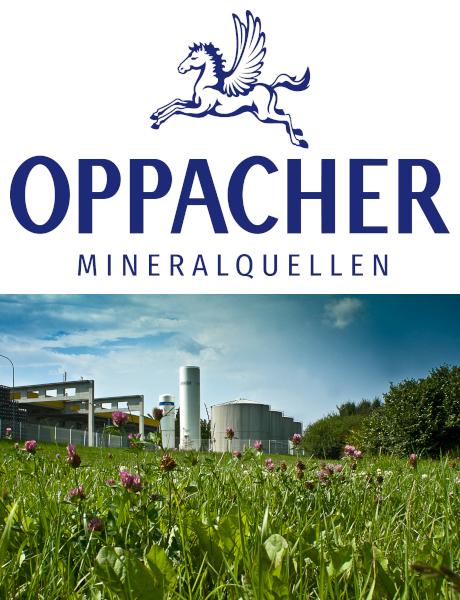 deutsches_gehoerlosensportfest_2021_sponsor_uebersicht_oppacher
